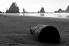 Towards the Arches...... (McCoy352) Tags: winter blackandwhite hiking driftwood shishi pointofthearches
