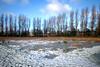 51 52 26 February 2013 (Paul Gloverpeel) Tags: blue winter sky white snow nature water rain liverpool nikon sigma bluesky waterloo wildflowers wildflower naturalworld 52 sigma1020mm l22 52weeks nikond60 nationalwildflowercentre 522012