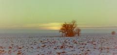 dutch winter (29) (bertknot) Tags: winter dutchwinter dewinter winterinholland winterinthenetherlands hollandsewinter winterinnederlanddutchwinter