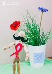 World Cancer Day #2 (✿ SUMAYAH ©™) Tags: world ca camera wood 2 canada man flower canon project photography eos flickr day edmonton cancer explore alberta pro وردة 550d sumayah سمية فلكرسمية المصورةسمية سميةعيسى flickrsumayah المصورةسميةعيسى sumayahessa