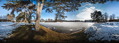 Adolf-Mittag-See im Winter - 360 (diwan) Tags: city blue schnee winter sky panorama lake snow tree ice nature canon germany geotagged deutschland eos see place stitch natur roundabout himmel magdeburg stadt blau eis baum panoramix 360 pinusnigra fotogruppe ptgui saxonyanhalt sachsenanhalt spiegelreflexkamera schwarzkiefer 2013 rotehorn adolfmittagsee canoneos650d spivpano fotogruppemagdeburg geo:lon=11643400 geo:lat=52119348