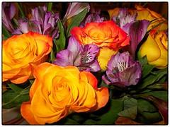 Vegas Bouquet (gastwa) Tags: life las vegas flowers light digital canon point still lowlight shoot nevada low ps andrew powershot pointshoot compact s100 gastwirth andrewgastwirth