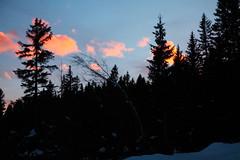 Tramonto sulle Dolomiti di Brenta (Familygo) Tags: travel winter italy ski kids children bambini viaggi viaggio sci trentino dolomiti pinzolo