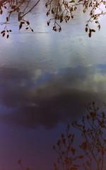 dutch winter (7) (bertknot) Tags: winter reflections reflecting mirror mirroring weerspiegeling dewinter winterinholland reflecties weerspiegel winterinthenetherlands hollandsewinter winterinnederlanddutchwinter