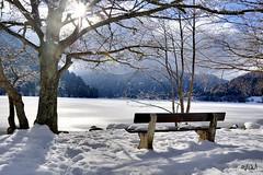 Vosges, lac de longemer
