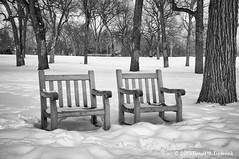 seating for two (dtredinnick13) Tags: winter blackandwhite bw snow minnesota nikon minneapolis nik benches d300 minnehahafallspark niksilverefexpro