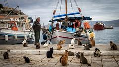 Hydra Island - Greece (Ioannisdg) Tags: travel summer vacation color beautiful europe flickr hellas greece hydra idra attica gof ellada seeyouingreece