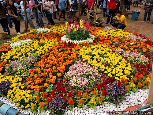 Panagbenga flower landscape contest at Burnham Park photos by Azrael Coladilla of Azraels Merryland Blog