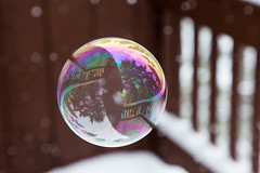 Bubble in snow (TomFalconer) Tags: winter snow reflections tahoe bubble snowing