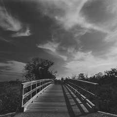 Florida Skies (Postcards From The Edge Photography) Tags: bridge trees sky clouds skies florida mangroves bradenton robinsonsperserve