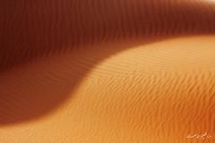 (© ibrahim) Tags: sun abstract nature stone clouds canon landscape photography eos sand desert image camel drought sands شمس ibrahim abdullah hilux عبدالله ابراهيم تصوير صحراء 50d الشمس رمال طبيعه كانون التميمي canon50d altamimi جفاف تجريد هايلكس سدير alyahya نفود ارطى النفود طرثوث لاندسكيب اليحيى الثويرات سبط