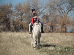 E letting Silver graze under saddle (lostinfog) Tags: horse silver colorado e30 2012 201211 riderem