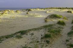Playa de la Llana (marathoniano) Tags: españa art beach see mar spain arte playa murcia espagne sanpedrodelpinatar lopagán lallana marathoniano ramónsobrinotorrens