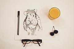(mylo_rabbit) Tags: pet cute rabbit bunny art illustration funny adorable hip hop lapin usagi mylo minilop uploaded:by=flickrmobile flickriosapp:filter=nofilter