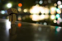 Full of lights (Takashi(aes256)) Tags: light night bokeh 日本 光 hibiyapark 夜 danbo 千代田区 東京都 日比谷公園 ボケ ダンボー nikond5200 nikonafsnikkor28mmf18g