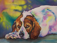 Molly (Christy Freeman - artist) Tags: horse dog cat breed petportrait custompainting oilportrait watercolorartist petart