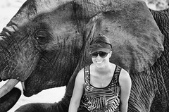 Bonding with Nature (Craig Pitchers) Tags: africa elephant nature animals fauna blackwhite nikon south adventures nikon2470mmf28 nikond7000
