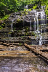 Station Cove Falls (The Suss-Man (Mike)) Tags: longexposure nature northgeorgiaphotographyclub oconeecounty rocks slowshutterspeed sonyslta77 southcarolina stationcovefalls sussmanimaging thesussman trees walhalla water waterfall unitedstates