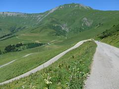 P1000362 (cyclingup.eu) Tags: bike cycle climb rad fahrrad aufstieg steigen fietsen klimmen cyclisme vlo grimper col du joly
