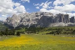 IMG_6955 (Ottimo.Piercing) Tags: valgardena summer mountain montaa   montagne vuori berg passosella sudtirol
