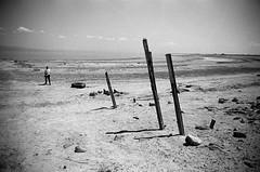 The Walk (bhop) Tags: salton sea california indio desert saltonsea bw monochrome black white kodak trix 400tx film nikon f4 f4s filmcamera analog 2850mm ais