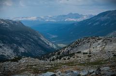 Lyell Canyon from the Pass (deanwampler) Tags: sierras donahuepass anseladamswilderness yosemitenp jmt johnmuirtrail