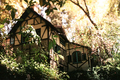 Exa 1C Old Mill Busch Gardens 3 () Tags: original busch gardens pasadena los angeles california history heritage theme park film tour mill waterwheel 1920s adolphus public private abandoned exa east germany ddr gdr slr m42 classic retro vintage 35mm camera