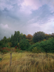 30.09.16 (Kirby_Wilson) Tags: autumn storm evening sweden skne r woods fall colours colors clouds nature
