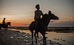 Riding in the sunset (Alfonso Lpez Rodrguez) Tags: indonesia bali lombok gili gilitrawangan islasgili giliisands islands islas sun sunset sunlight sl atardecer horses horse caballos caballo beach playa sea mar coast coastline costa horseriding montar people gente indonesians indonesios landscape paisaje beautiful beautifullandscapes beautifullandscape hermoso color colour men