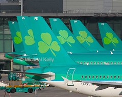 """Tails of Aer Lingus"" (Flame1958) Tags: aerlingus aerlingustails aerlingusaircraft ireland eire airbus a320 dub eidw dublinairport 220916 0916 2016 9030a"