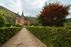 basilica de Covadonga (jopas2800) Tags: cathedral tree clouds red camino asturias seto nikon d610 tokina 1628 verde