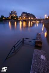 Crue 2016 (A.G. Photographe) Tags: anto antoxiii xiii ag agphotographe paris parisien parisian france french franais europe capitale cathdralenotredamedeparis notredame crue2016 iledelacit d810 nikon nikkor 1424 bluehour heurebleue