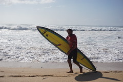 DSC05334 (neilreadhead) Tags: awt1 hawaii oahu waimeabay