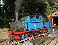 Taking Turns (Feversham Media) Tags: klr kirkleeslightrailway hawk kirklees claytonwest yorkshire dearnevalley westyorkshire narrowgaugerailways narrowgaugelocomotives steamlocomotives