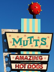 MUTTS (tikitonite) Tags: street urban hot color dogs sign america restaurant hotdog amazing colorful metro dive diner signage mutts americana roadside oklahomacity frankfurter fragment okcmetro