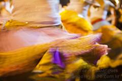 Carnaval do Rio de Janeiro 2013 (AF Rodrigues) Tags: carnaval festa fundioprogresso folia bloco lapa riomaracatu festejo 2013 carnavaldoriodejaneiro folies afrodrigues carnaval2013