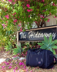 Aeronaut in Noosa, Queensland, Australia (TOM BIHN) Tags: noosa carryon aeronaut tombihn travelbag onebag onebagtravel convertiblebag