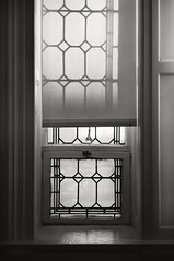 window shade and shadow (frntprchprss) Tags: shadow blackandwhite window shade blackwhitephotos fixedshadows springfieldartmuseum jamesgehrt