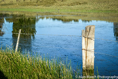 Chacras de la Patagonia (Alan W March) Tags: patagonia naturaleza green nature water argentina landscape agua farm sur hdr reflejos charcas