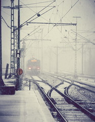 Through the Snow (freyavev) Tags: white snow train germany deutschland traintracks snowstorm platform trainstation february sbahn leonberg