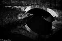 2215 - Pont en reflet, Pays de Guines, 2012 (ikaune) Tags: bridge blackandwhite bw noiretblanc nb pont numrique ruisseau paysageurbain ikaune