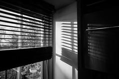 Blinds (michaeljh89) Tags: light white black window blind blinds