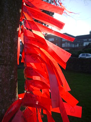 Ribbons (Katie_Russell) Tags: trees ireland red tree river ribbons bann wishes northernireland ribbon ni wish ulster nireland coleraine christiepark countylondonderry countyderry riverbann coderry wishingtrees colondonderry colderry countylderry