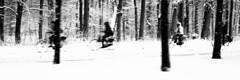 2013-01-14 [31] Wassenaar (Reinoud Kaasschieter) Tags: schnee winter white snow black netherlands monochrome cyclists sneeuw nederland zwart wit weiss wassenaar schwarz radfahrer zuidholland fietsers