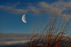 Here we go again..... (l_dewitt) Tags: sky moon landscape nikon newengland newenglandcoast landscapeimages nikond5000 winter2013