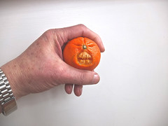 Mr Grumpy (alanpeacock2) Tags: sculpture orange halloween fruit carve tango homemade micro ugly squash citrus vitaminc marmalade orangepeel satsuma x10 calamondin williamoforange monsterorange {faces