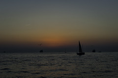 Murrill_021313_DSC2698 (Janet Murrill) Tags: sunset florida keywest mallorysquare