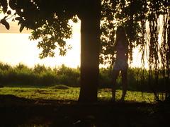 Não ir embora: Ato de amor e confiança. (RehCarv) Tags: shadow tree love girl beauty self skinny photo chica amor sombra brazilian renata árvore galhos magra confiança beautifulphoto ameninaqueroubavalivros