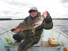 Power Bayk (Blu, Enid) Tags: walleye mcinneslake
