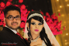 New Couple (Shajal1) Tags: old pink blue wedding portrait woman white man black beautiful beauty yellow closeup night canon wonderful dark lens photography eos golden evening amazing nice couple colorful dof shot ceremony samsung 300mm reception disk dell intel excellent hassan dhaka lovely occasion bangladesh core 75mm supershot 2013 i7 70mm300mm canon60d shajal canoneos60d blinkagain gettyimagesbangladeshq12012 qamrul qamrulhassanshajal